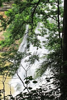 Rebecca Frank - Burgess Falls