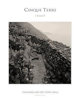 Cinque Terre by Massimo Conti