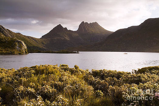 Tim Hester - Cradle Mountain Tasmania