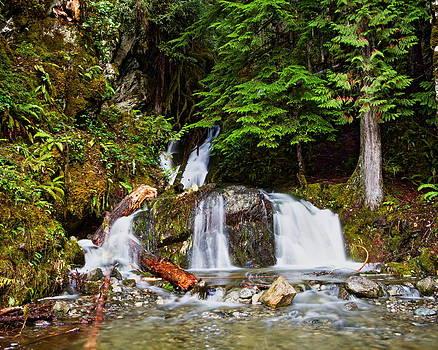 4 Falls by Daryl Hanauer