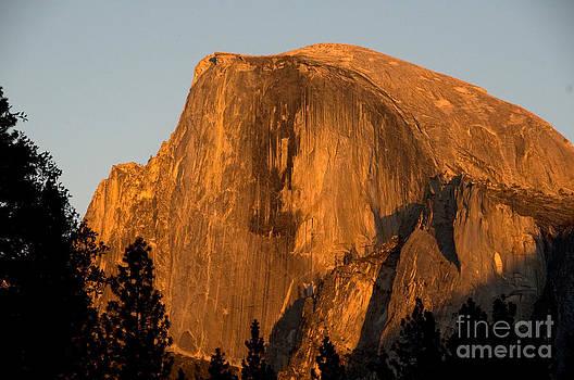 Mark Newman - Half Dome, Yosemite Np