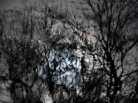 Hidden face by John OBrien
