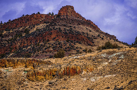 John Day Fossil Beds National Monuments by Shiela Kowing