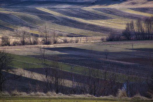 Landscape by Anna Gora