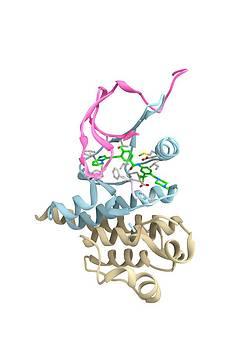 Ponatinib Leukaemia Drug Molecule by Ramon Andrade 3dciencia