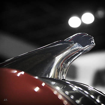 Pontiac Chieftain by Andrea Kelley