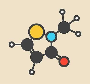 Preservative Molecule by Molekuul