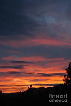 NightVisions - 800P Sunset