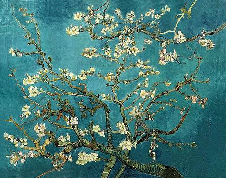 Van Gogh Blossoming Almond Tree by Masterpieces Of Art Gallery