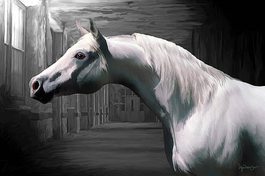 43. Soft arab by Sigrid Van Dort
