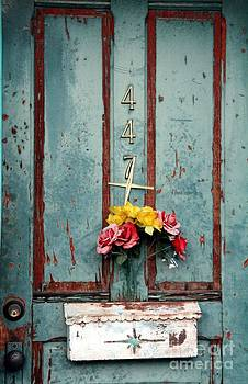 447 Door by Diane Greco-Lesser