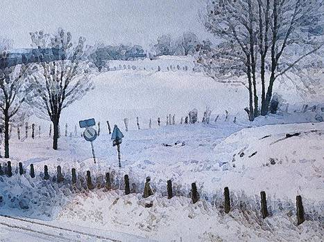 Snow Study by Philip White