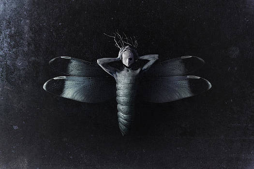 The Moth by Victor Slepushkin