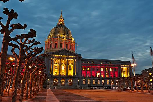 49er Nation - Pure Red and Gold by Jorge Guerzon