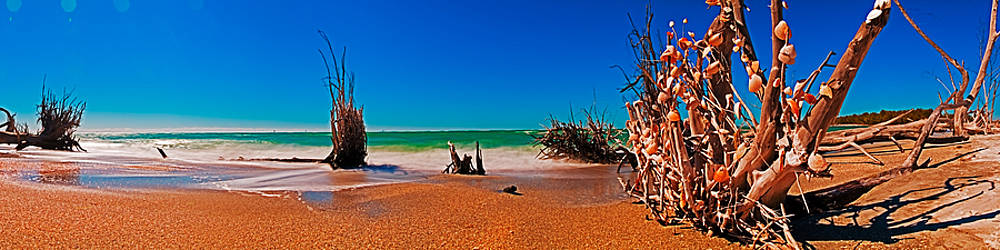Rolf Bertram - 4X1 Florida Beach Panorama 732