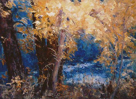 Boulder Creek - 2 by Chisho Maas