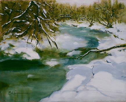 Boulder Creek by Chisho Maas