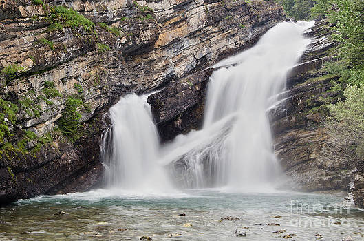 Cameron Falls by Dee Cresswell