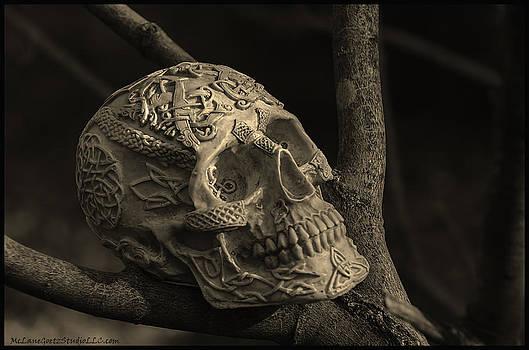 LeeAnn McLaneGoetz McLaneGoetzStudioLLCcom - Celtic Skulls Symbolic Pathway to the other world