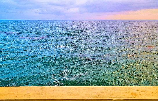 Tommi Trudeau - Malibu Beach House Patio View