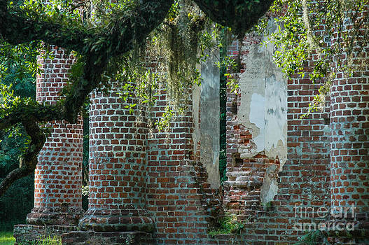 Dale Powell - Sheldon Church Ruins SC