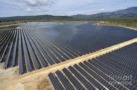 Sami Sarkis - Solar Panels in Farm