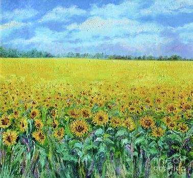 Shan Ungar - Sunflower Field Under Blue Skies