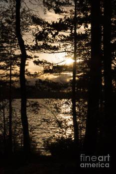 Peter Noyce - Swedish lake glimpsed through trees