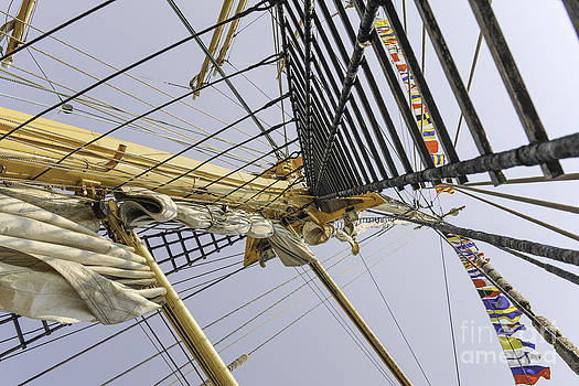 Dale Powell - Tall Ship Rigging