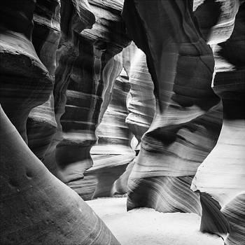 Nicole Neuefeind - Textured shades of gray