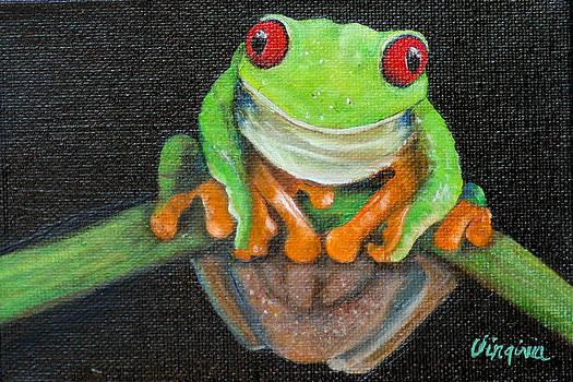 Red Eye Tree Frog by Virginia Butler