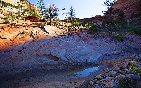 Zion National Park Utah USA by Richard Wiggins