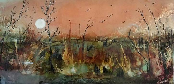 #579 Friendship Lands by Linda Skibinsky