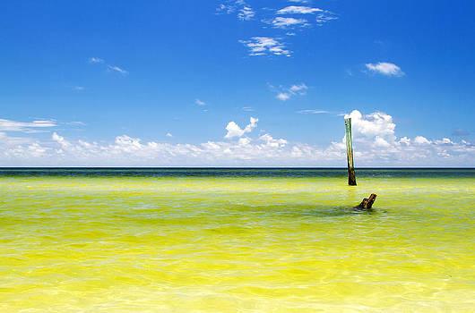 Boca Grande Florida by Fizzy Image