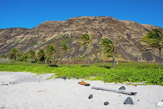 Halape Beach, Puna Coast Trail, Hawaii by Joshua Rainey