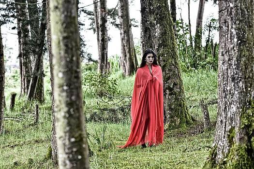 Modern Little Red Riding Hood by Kike Calvo