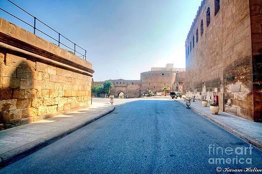 Salaheldin Citadel by Karam Halim
