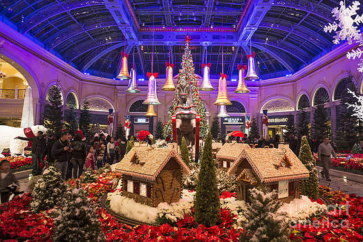 Jamie Pham - The magical holiday seasonal display at the Bellagio Conservator