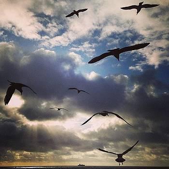 Instagram Photo by Matt Proehl
