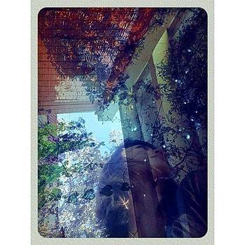 Instagram Photo by Zarah Delrosario