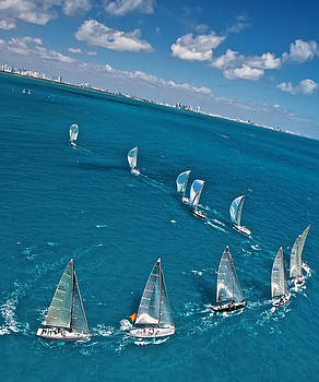 Steven Lapkin - Miami Sail Week