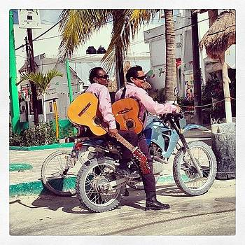 Musica de Holbox by Anne Phillips