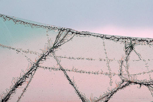 Broken Car Window Glass Campo Santo Saguache Colorado 2012  by John Hanou