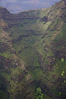 Steven Lapkin - Kauai Landscape