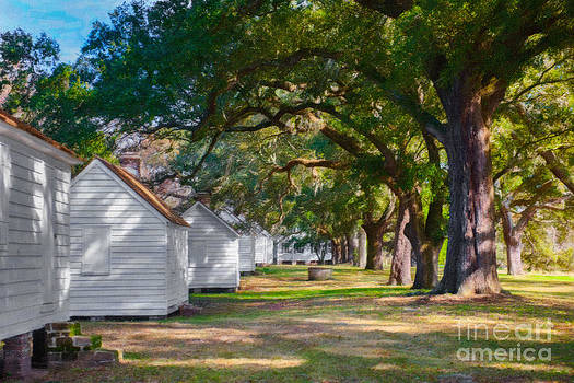 Dale Powell - Lowcountry Plantation Tour