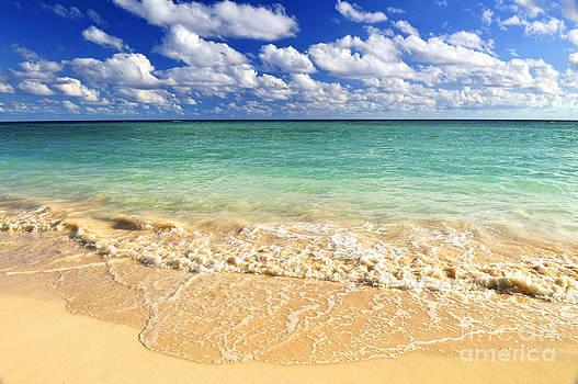 Elena Elisseeva - Tropical beach