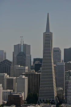 Steven Lapkin - San Francisco Skyline