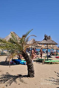 George Atsametakis - Vai beach