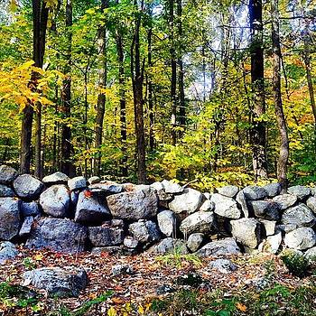 Stone wall by Danielle Godfrey