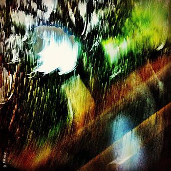 Untitled by Barbara Ruano